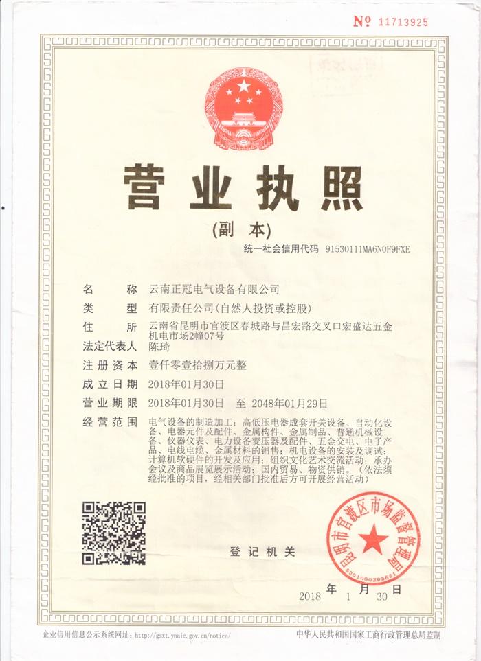 云南betway必威官网手机版电气营业执照副本
